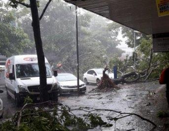 Temporal provocó destrozos en Foz de Iguazú